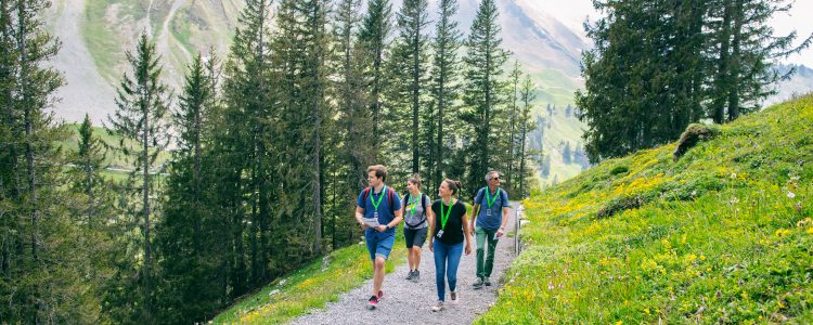 Are you looking for a fun, active,and unique outdoor experience?Foxtrailgot you covered!